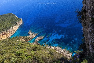 Cala Gonone Excursions - Boat Itineraries