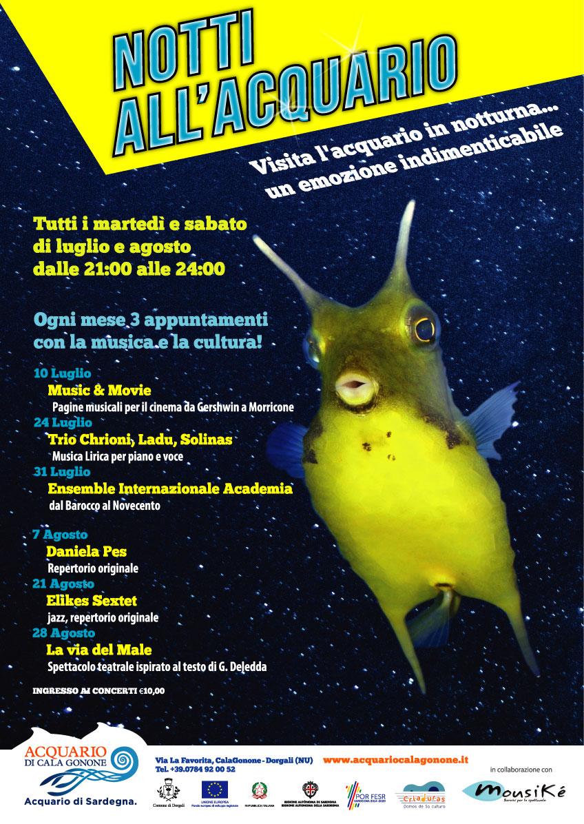 Notti all'Acquario - Evento Cala Gonone 10 -24 - 31 Luglio | 7 - 21 - 28 Agosto15 Luglio